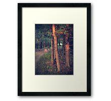 Highlights (version V) Framed Print
