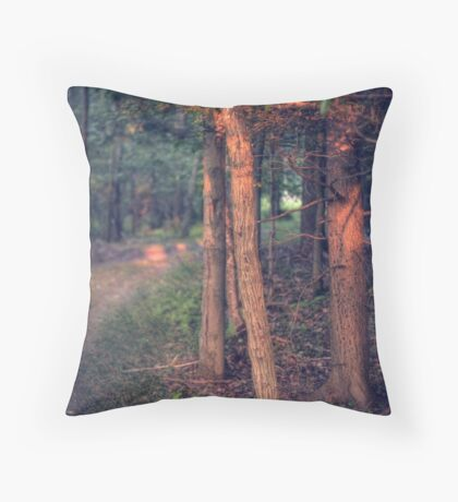 Highlights (version V) Throw Pillow