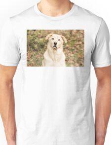 Curiosity Unisex T-Shirt