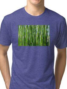 Green bamboo background Tri-blend T-Shirt