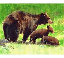 The Three Bears Photographic Print