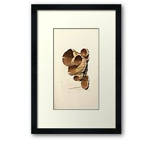 Coloured figures of English fungi or mushrooms James Sowerby 1809 0069 Framed Print