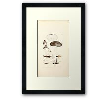Coloured figures of English fungi or mushrooms James Sowerby 1809 0211 Framed Print