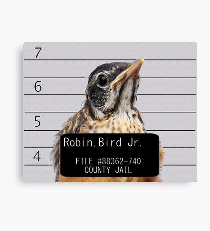 Jail Bird Canvas Print