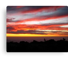 Wow! Look Dad. Canvas Print