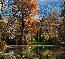 Pond, beautiful fall colors by Rostislav Bouda