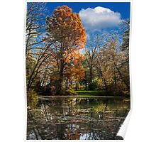 Pond, beautiful fall colors Poster
