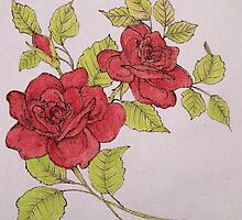 Roses by judykay