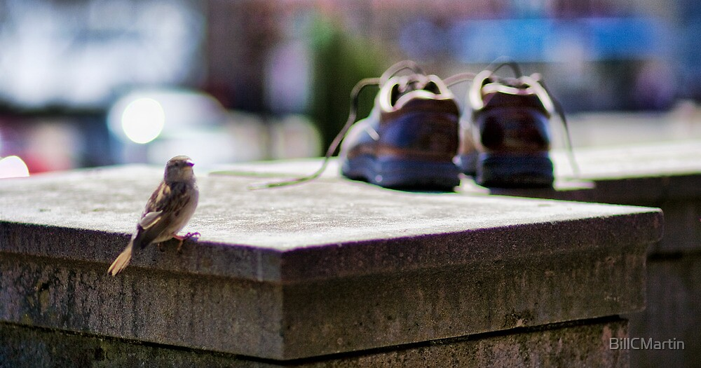 Bird and Boots by BillCMartin