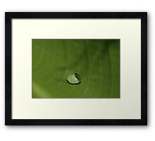 the world holds in a drop Framed Print