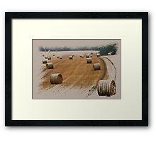 Harvest 2010 Framed Print