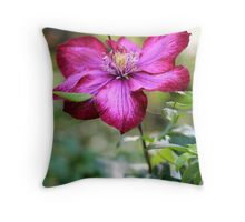 Mauve Honeysuckle Throw Pillow