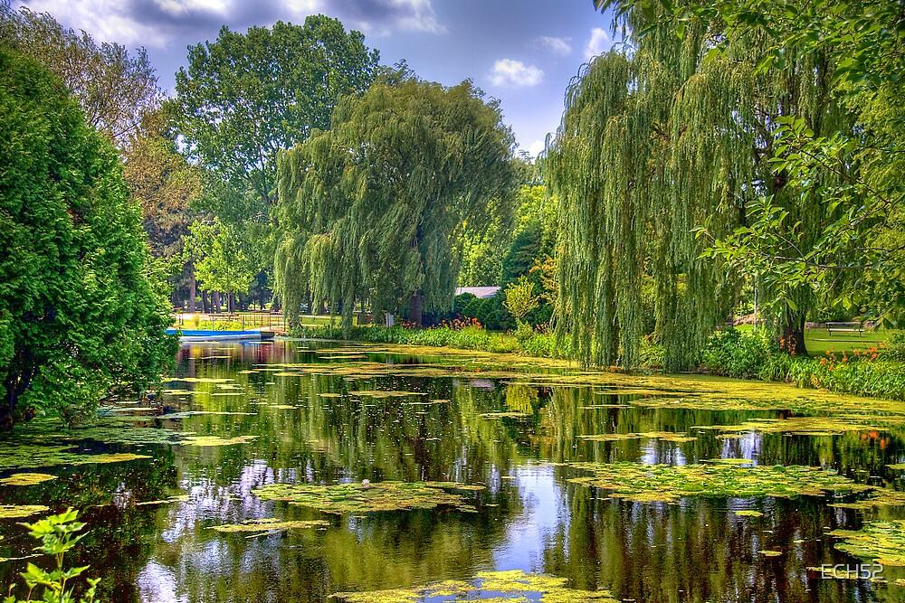 Lakeside Park Lagoon-3 by ECH52