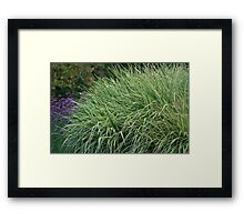 Grass and Wildflowers Framed Print