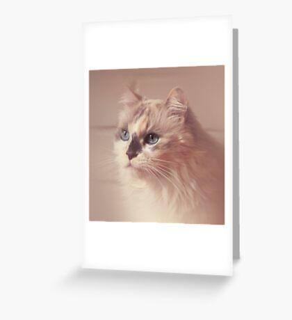 My Beautiful Mia Greeting Card