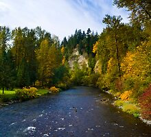 Autumn on the Cedar by RavenFalls