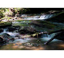babbling brook Photographic Print