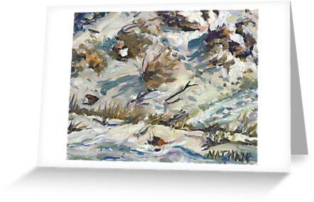Desert Snow by cmnathan