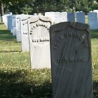 Unknowns from the USS Maine by hcorrigan