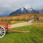 Patagonian Landscape - Torres del Paine National Park by naturalnomad