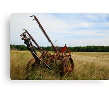 Old Field Toy Canvas Print