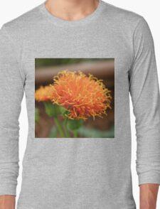 Scruffy Long Sleeve T-Shirt