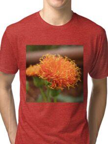 Scruffy Tri-blend T-Shirt
