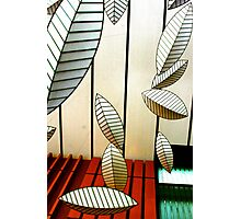 Geometric Leaves Photographic Print