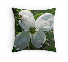 Snow White Dogwood Blossom Throw Pillow