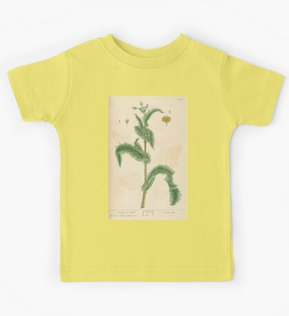 A curious herbal Elisabeth Blackwell John Norse Samuel Harding 1737 0086 Prickly Sow Thistle Kids Tee