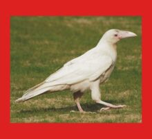 """Dare To Be Different"" (Rare White Raven) Kids Clothes"