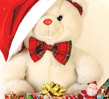 Teddy Bear's Xmas by pogomcl