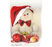 Mr Teddy Bear has a present Poster