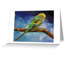 Wild Parakeet Greeting Card