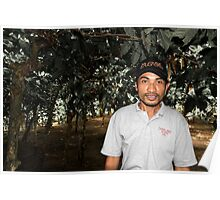 Bali Coffee Plantation Poster