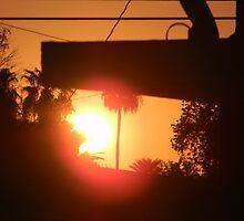 A New Day Dawns by Leyla Hur