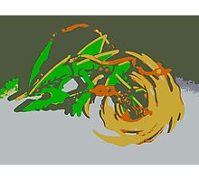 """""""Minimalistic Pokemon - Mega Rayquaza """" by limitedskins.com Photographic Print"""
