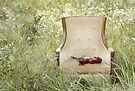Roses on a Chair by April Koehler