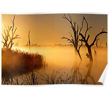 Golden Morning - Lake Mulwala Poster