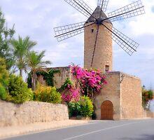 Majorca Mill by Rosy Kueng