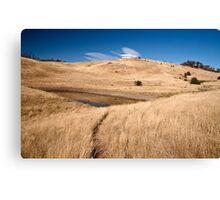 Pasture land Canvas Print