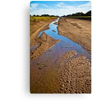 Irrigation channel Canvas Print