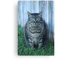 Seriously.... Canvas Print