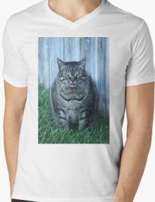 Seriously.... Mens V-Neck T-Shirt