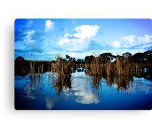 Onkaparinga River Recreation Park Canvas Print
