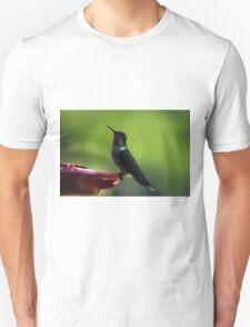 Female Ruby-Throated Hummingbird Unisex T-Shirt