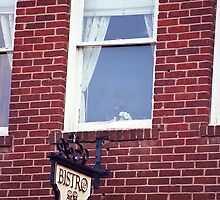 Jonesborough, Tennessee - Window Over the Shop by Frank Romeo