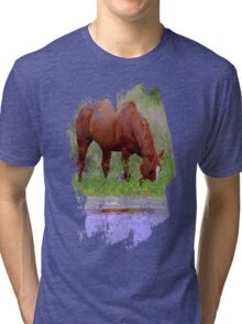 Red horse by the water Tri-blend T-Shirt
