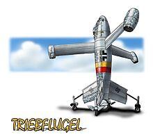 Focke-Wulf Fw Triebflugel Photographic Print