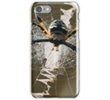 Hanging by a Thread iPhone Case/Skin